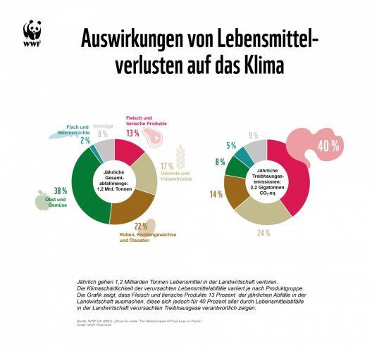 Grafik: Auswirkungen von Lebensmittelverlusten auf das Klima
